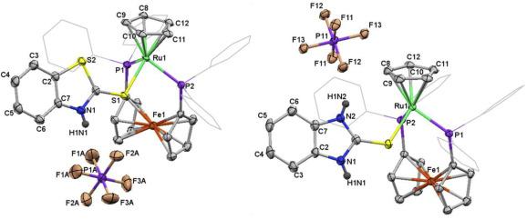 Cyclopentadienyl ruthenium complexes of mixed heterocyclic
