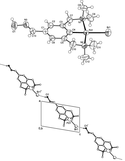 Oxime Substituted Ncn Pincer Palladium And Platinum Halide Polymers