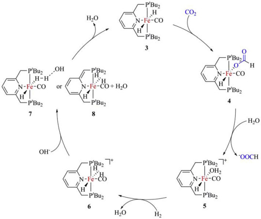 Iron Catalyzed Hydrogenation And Electrochemical Reduction Of Co2