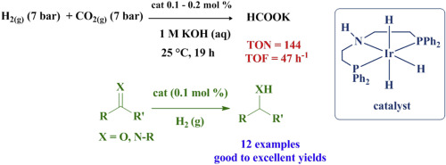 Hydrogenation of CO2, carbonyl and imine substrates catalyzed by