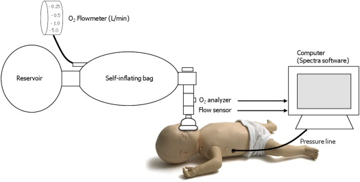 Neonatal resuscitation in resource limited settings titrating appendix fandeluxe Image collections