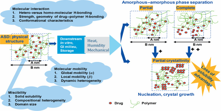 Structural And Dynamic Properties Of Amorphous Solid Dispersions