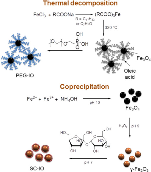 Size-dependent magnetic properties of iron oxide