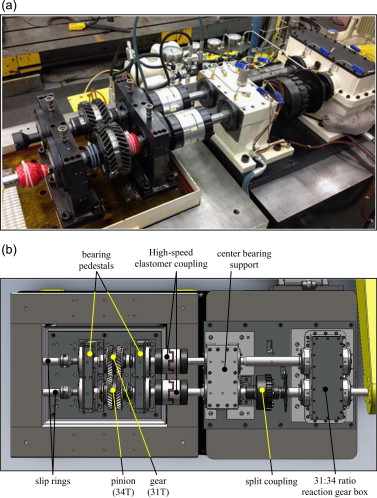 An experimental and theoretical study of the dynamic behavior of