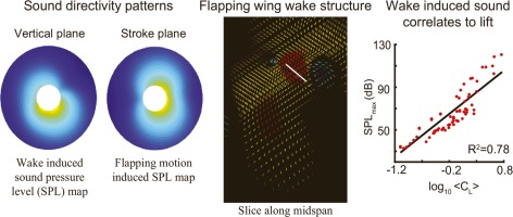 Effects of flapping wing kinematics on the aeroacoustics of hovering