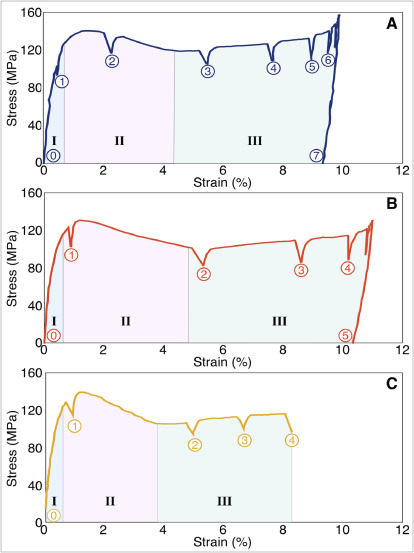 Ferroelastic twin reorientation mechanisms in shape memory