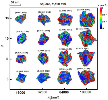 Effect of graphene sheet numbers on the size and morphologies of the assembled particles after complete evaporation of liquid under Pt=20 atm