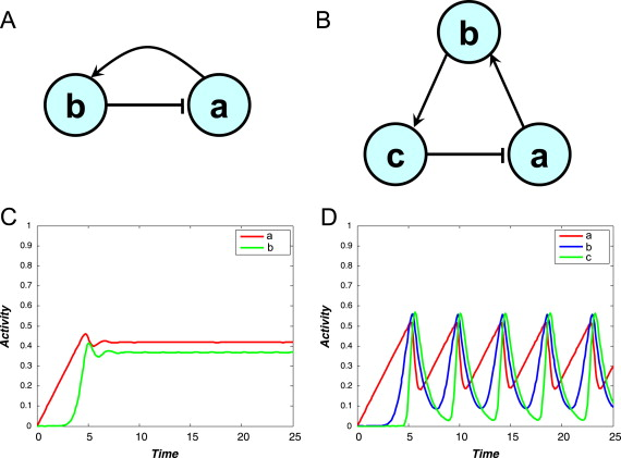 A Mathematical Approach To Emergent Properties Of Metabolic Networks