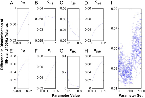 Modelling the dynamics of CaMKII–NMDAR complex related to