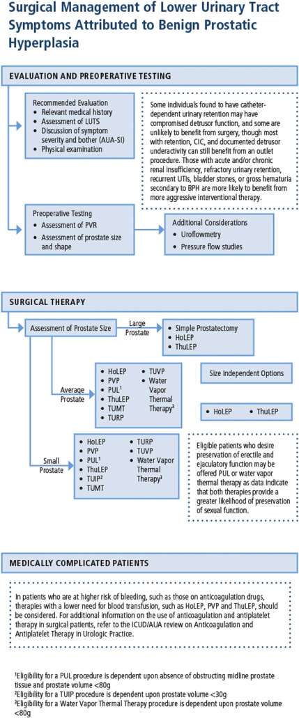 Surgical Management of Lower Urinary Tract Symptoms