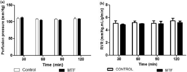 Study of the safety of methylphenidate: Focus on nephrotoxicity