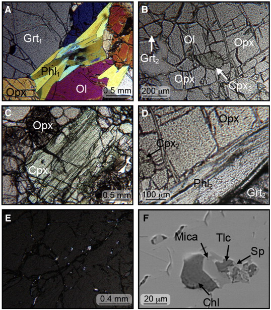 Fluid/mineral interaction in UHP garnet peridotite