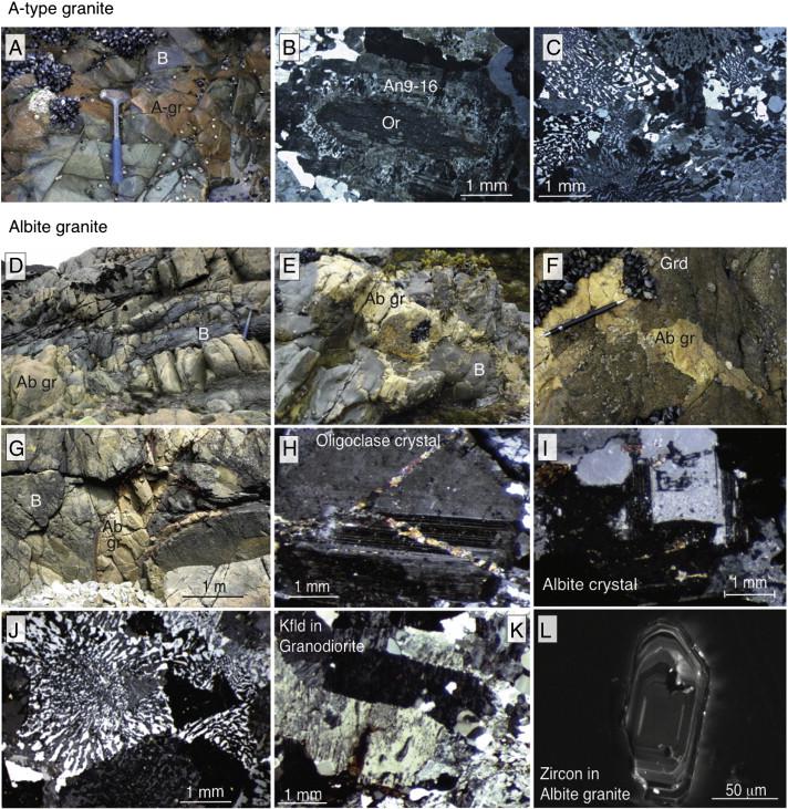 Petrogenesis of magmatic albite granites associated to