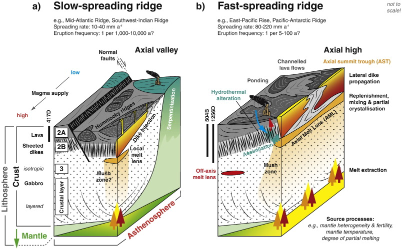 The Timescales Of Magma Evolution At Mid Ocean Ridges Sciencedirect