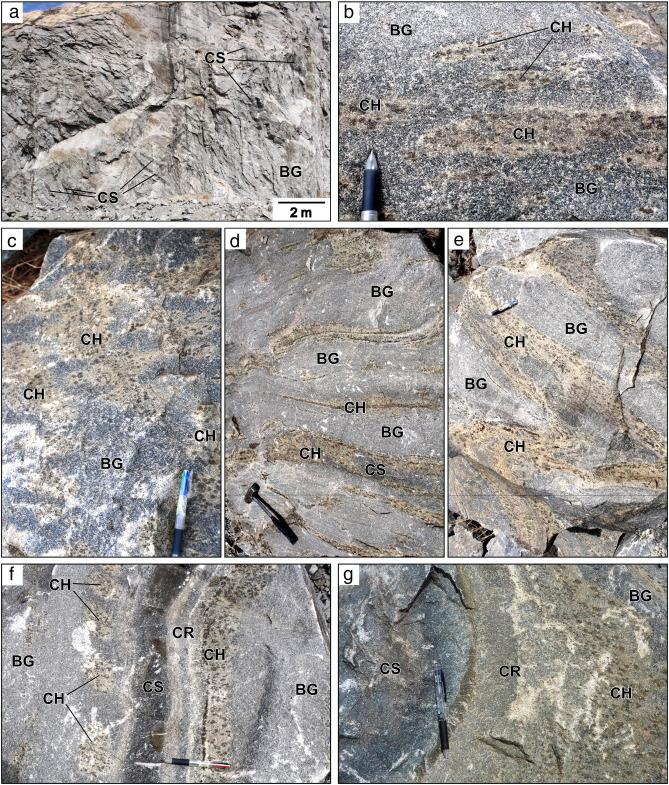 Petrogenesis of incipient charnockite in the Ikalamavony sub