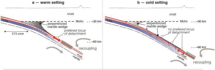 The subduction plate interface: rock record and mechanical