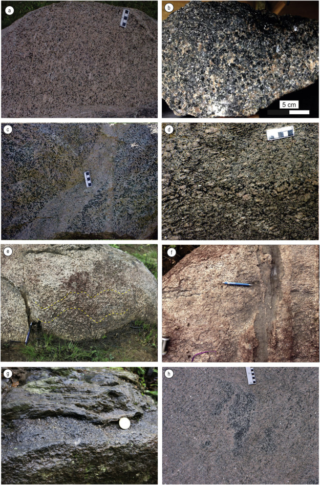 Sources and settings of Ediacaran post-collisional syenite-monzonite