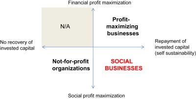 Grameen Social Business Model