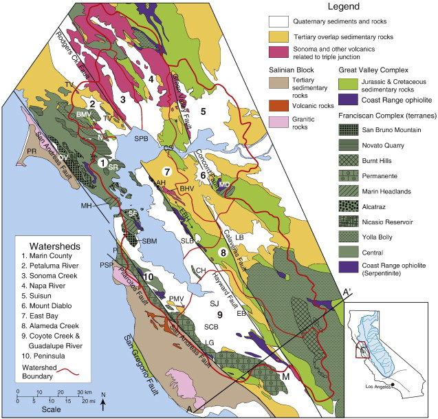 Bedrock geology of the San Francisco Bay Area A local sediment