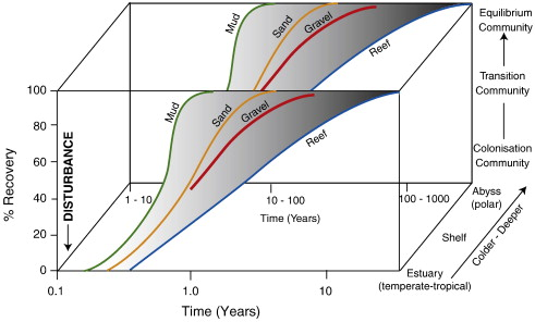 Shelf and deep sea sedimentary environments and physical benthic rate of ecological succession generalized relationship between elapsed time versus percentage of recovery for different benthic communities as a function ccuart Gallery