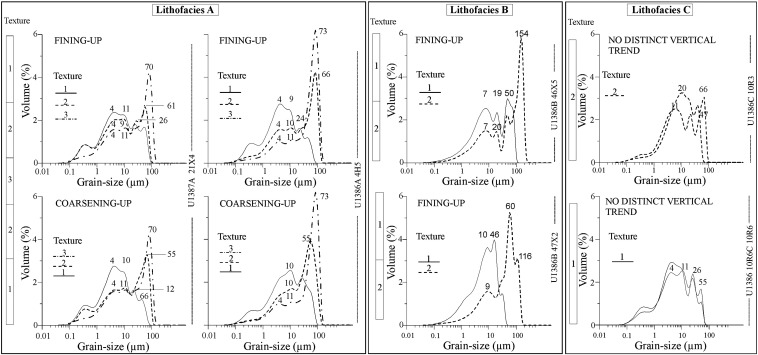 Contourite vs gravity-flow deposits of the Pleistocene Faro
