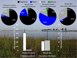 Microplastic in two South Carolina Estuaries: Occurrence