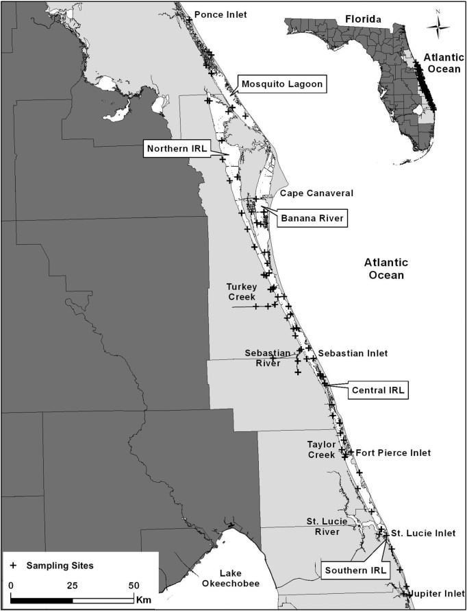 Widespread Sewage Pollution Of The Indian River Lagoon System - Indian river lagoon map