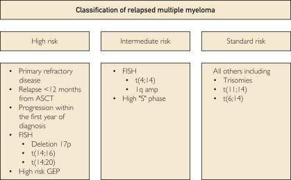 Therapy for Relapsed Multiple Myeloma: Guidelines From the