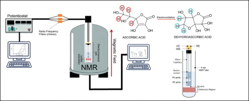 Electrochemical Nmr Spectroscopy Electrode Construction And