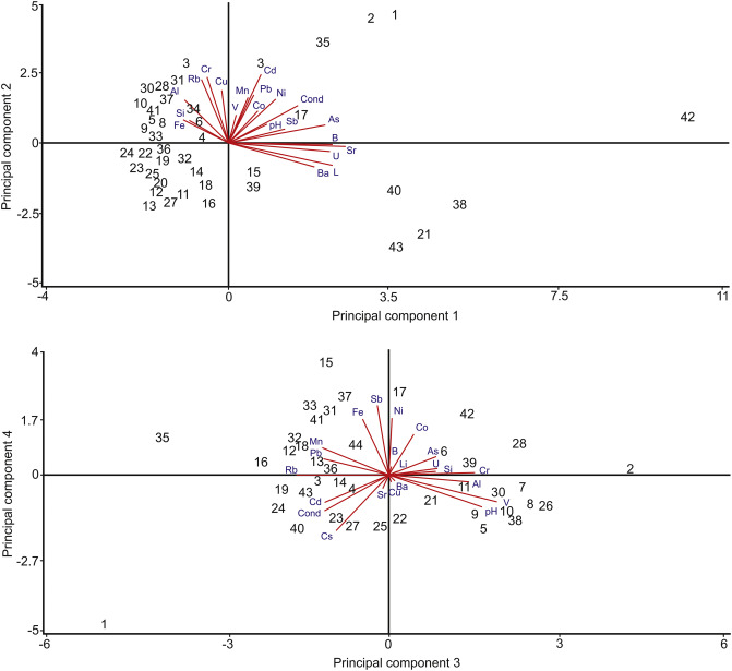 Exposure to 19 elements via water ingestion and dermal contact in