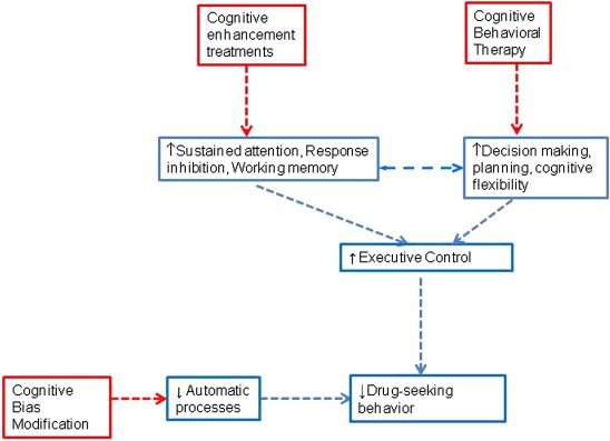 Cognitive Enhancement As A Treatment For Drug Addictions Sciencedirect
