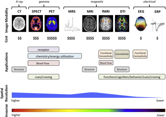 New perspectives on using brain imaging to study CNS stimulants