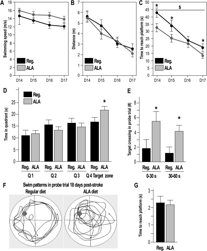 alpha linolenic acid given as enteral or parenteral nutritional