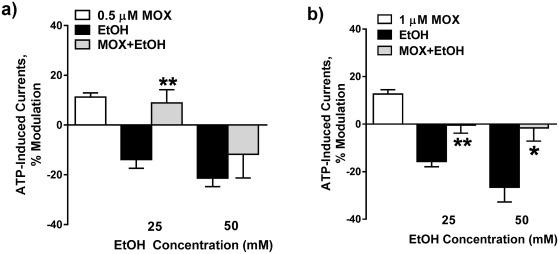 Preclinical development of moxidectin as a novel therapeutic