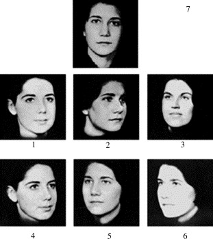 Test your facial recognition