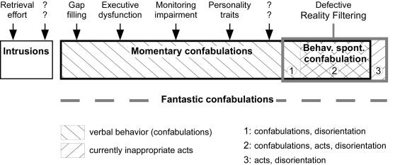 Tipos de confabulaciones