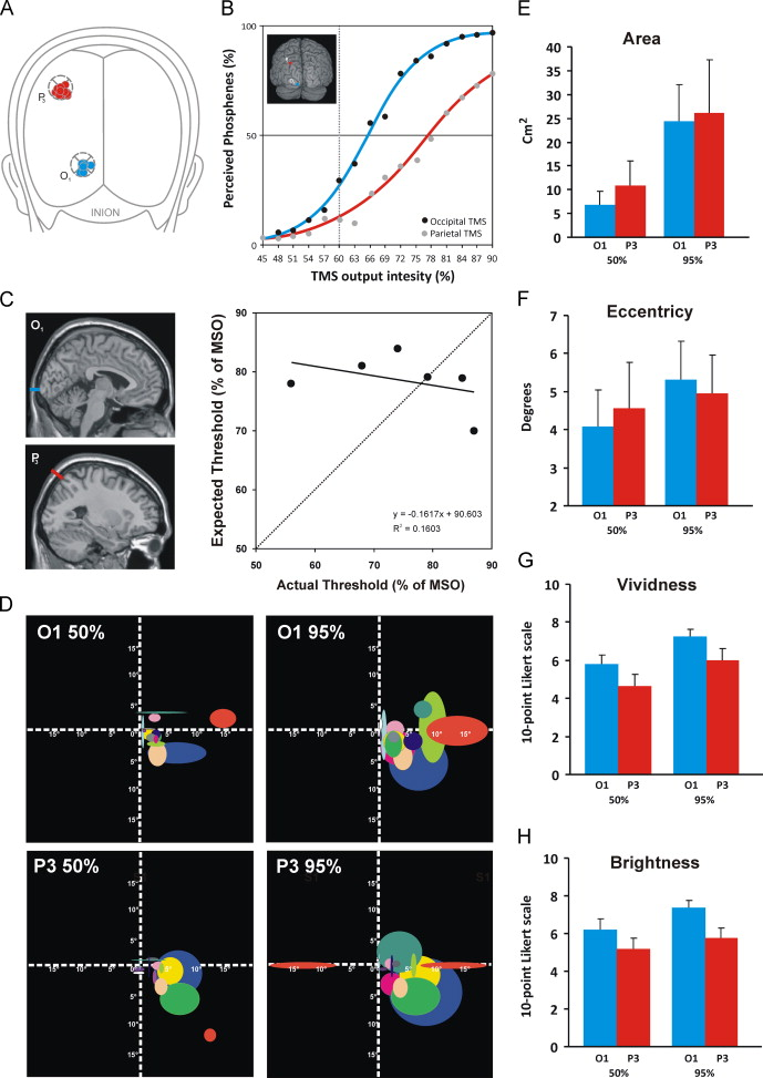 Can IPS reach visual awareness without V1? Evidence from TMS in