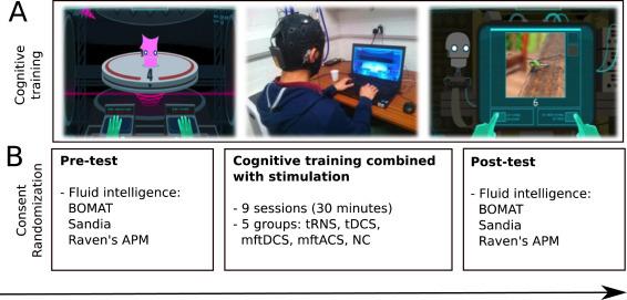 Modulating fluid intelligence performance through combined
