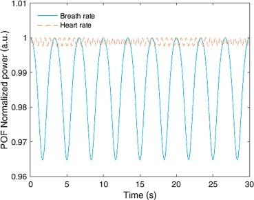 Polymer optical fiber-based sensor for simultaneous