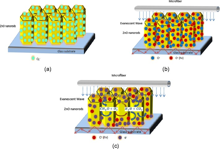 Awesome Formaldehyde Sensing Using Zno Nanorods Coated Glass Alphanode Cool Chair Designs And Ideas Alphanodeonline