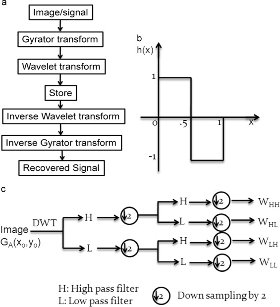 Optical asymmetric image encryption using gyrator wavelet transform