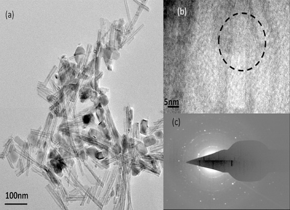 Investigation of annealing effects on TiO2 nanotubes