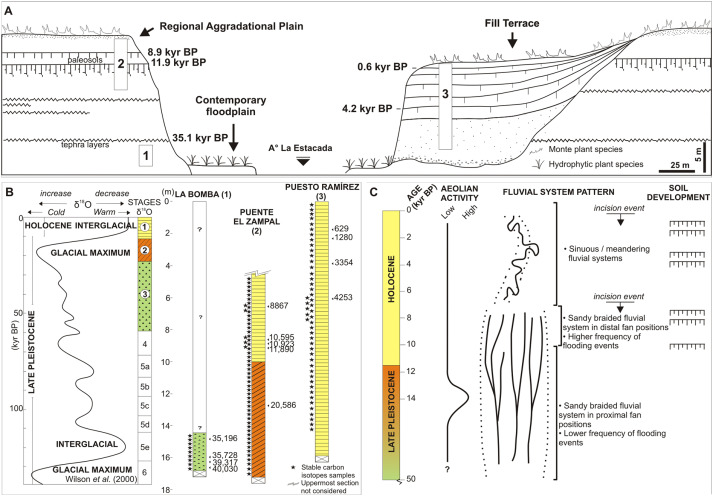 Late Pleistocene and Holocene vegetation changes in the arid Andean ...