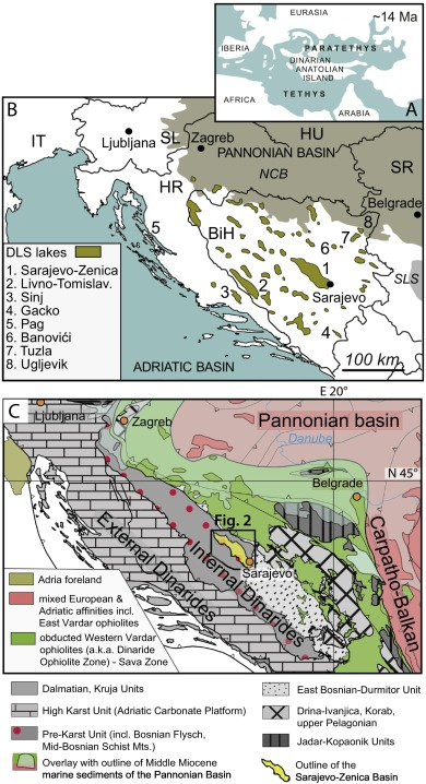 Magneto Biostratigraphy And Paleoenvironments Of The Miocene