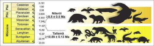 Detrital zircon U–Pb geochronology constrains the age of
