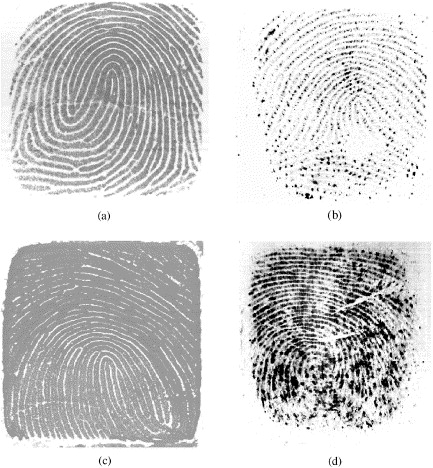 Innovations in fingerprint capture devices - ScienceDirect
