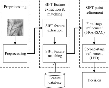 A SIFT-based contactless palmprint verification approach using