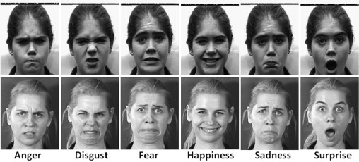 Statiscal manual of facial expressions