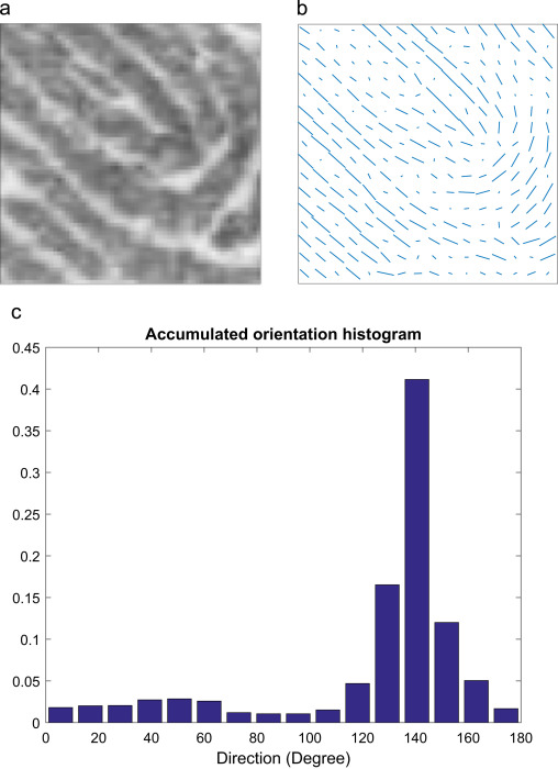 Fingerprint indexing with pose constraint - ScienceDirect