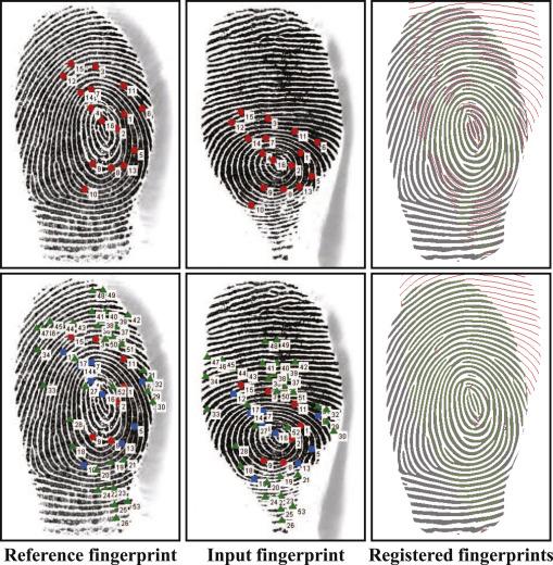 Dense registration of fingerprints - ScienceDirect
